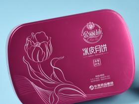 金丽沙 饼皮月饼(长方罐红色款)480g礼盒,水果冻干月饼,郑州金丽沙月饼厂家总代理